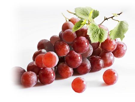 czerwone_winogrona_nasiona_calivita_resveratrol_resweratrol_xantho_zenthonic